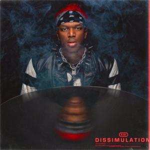آلبوم: Dissimulation Ksi