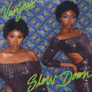 تک موزیک: Slow down Vanjess