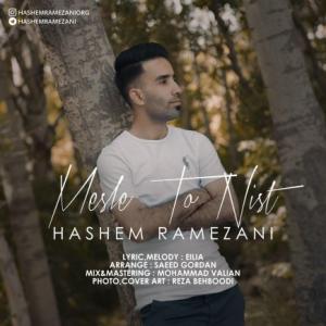 تک موزیک: مثل تو نیست هاشم رمضانی