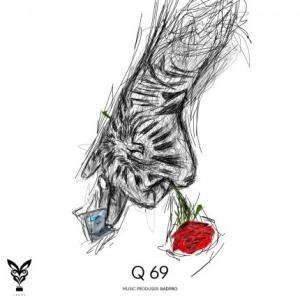 تک موزیک: Q69 حصین