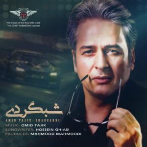 تک موزیک: شبگردی امیر تاجیک