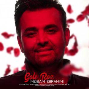 تک موزیک: گل رز میثم ابراهیمی